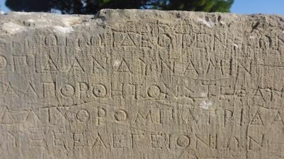 Delphi 024